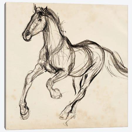 Gestural Apaloosa I Canvas Print #JPP553} by Jennifer Paxton Parker Canvas Art