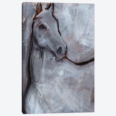 White Horse Contour I Canvas Print #JPP578} by Jennifer Paxton Parker Canvas Art