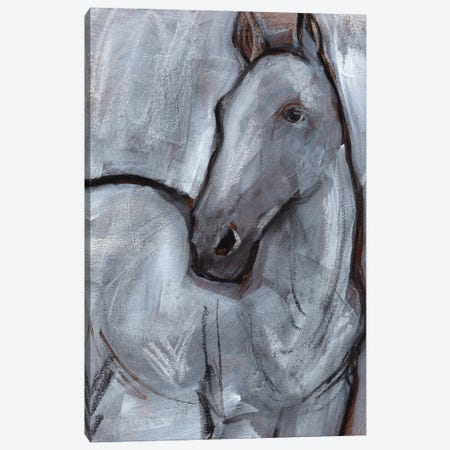 White Horse Contour II Canvas Print #JPP579} by Jennifer Paxton Parker Canvas Wall Art