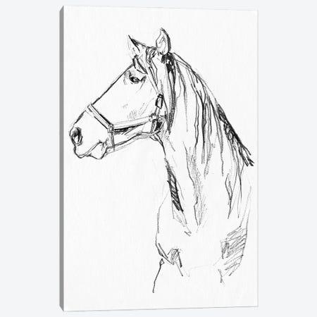 Bridle Portraits I Canvas Print #JPP587} by Jennifer Paxton Parker Canvas Artwork