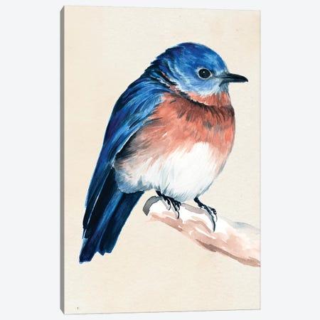 Little Bird On Branch I Canvas Print #JPP5} by Jennifer Paxton Parker Canvas Art Print