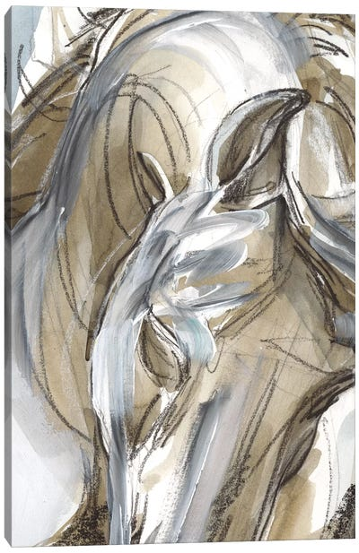 Horse Abstraction I Canvas Art Print