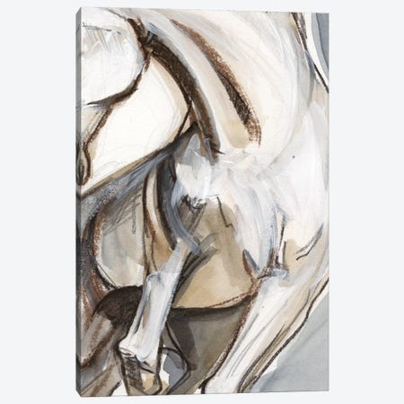 Horse Abstraction II Canvas Print #JPP62} by Jennifer Paxton Parker Art Print