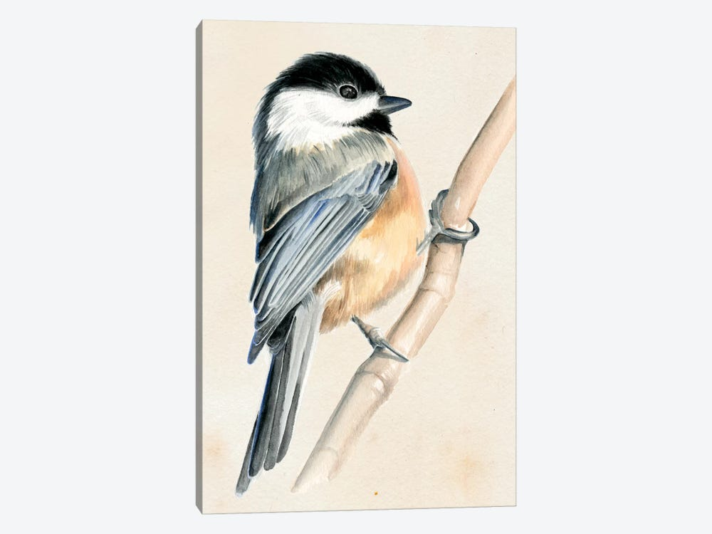 Little Bird On Branch II by Jennifer Paxton Parker 1-piece Art Print
