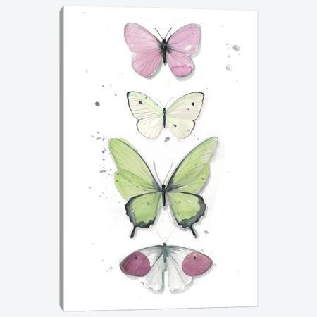 Summer Butterflies II Canvas Print #JPP82} by Jennifer Paxton Parker Canvas Print