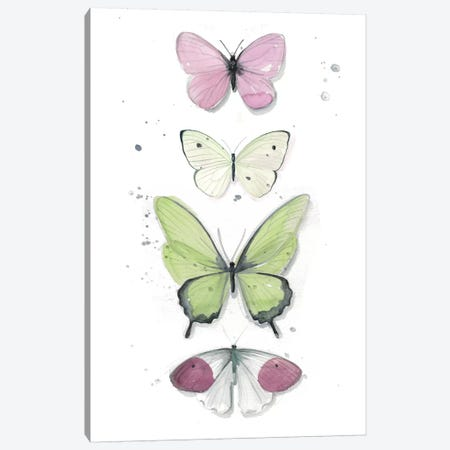 Summer Butterflies II Canvas Print #JPP82} by Jennifer Paxton Parker Canvas Print