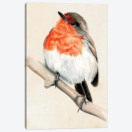 Little Bird On Branch IV Canvas Print #JPP8} by Jennifer Paxton Parker Canvas Wall Art