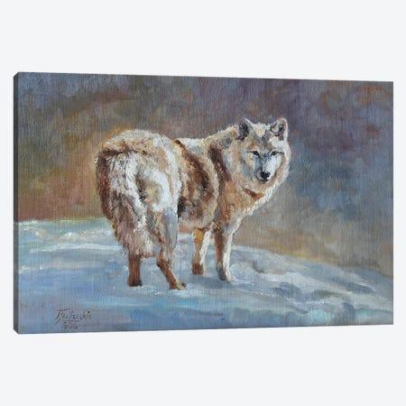 snow blonde Canvas Print #JPR15} by Jan Perley Canvas Art Print