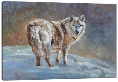 snow blonde Canvas Art Print