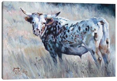 Summer Pastures Canvas Art Print