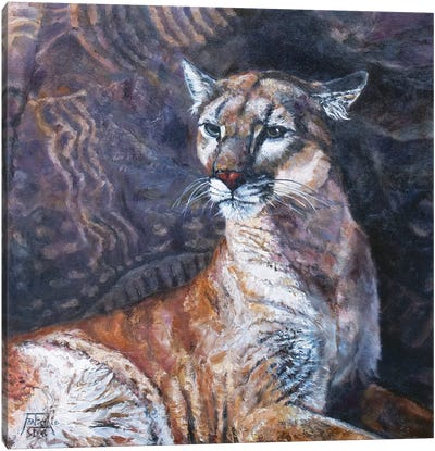 The Puma of Parowan Gap Canvas Art Print