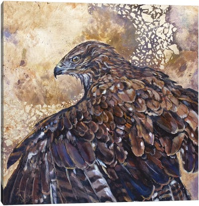 Thermals Canvas Art Print