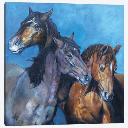 Three Amigos Canvas Print #JPR25} by Jan Perley Canvas Wall Art