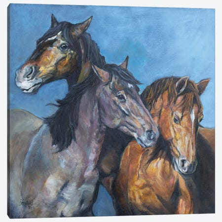 Tres Amigos Canvas Print #JPR29} by Jan Perley Art Print
