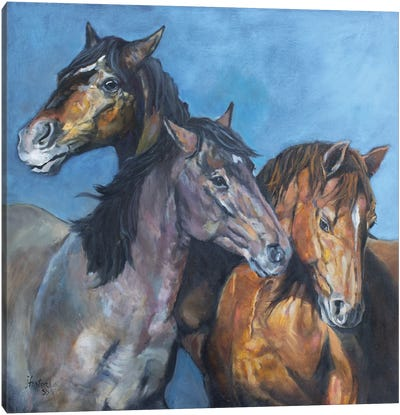 Tres Amigos Canvas Art Print