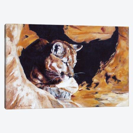 Drowsing at Redrock Canvas Print #JPR5} by Jan Perley Canvas Art Print