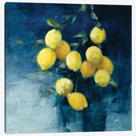 Lemon Grove II Canvas Print #JPU105} by Julia Purinton Canvas Wall Art