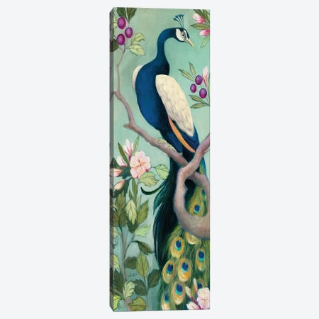 Pretty Peacock I Crop Canvas Print #JPU106} by Julia Purinton Canvas Wall Art