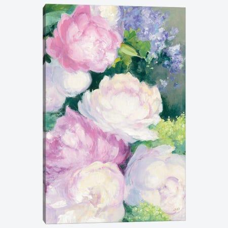 Summer Delight II Canvas Print #JPU10} by Julia Purinton Canvas Art Print