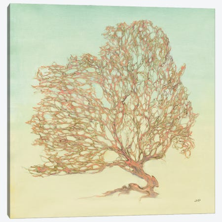 Sea Fern I Canvas Print #JPU126} by Julia Purinton Canvas Artwork