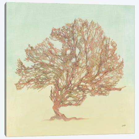 Sea Fern II Canvas Print #JPU127} by Julia Purinton Canvas Artwork