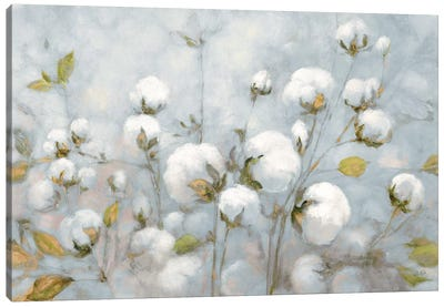 Cotton Field In Blue Gray Canvas Art Print