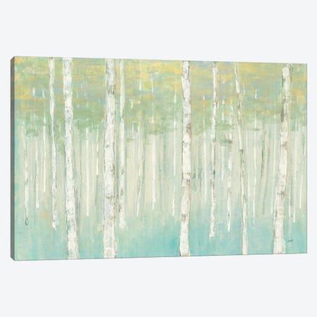 Birches at Sunrise 3-Piece Canvas #JPU33} by Julia Purinton Canvas Art Print