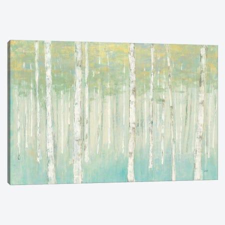 Birches at Sunrise Canvas Print #JPU33} by Julia Purinton Canvas Art Print