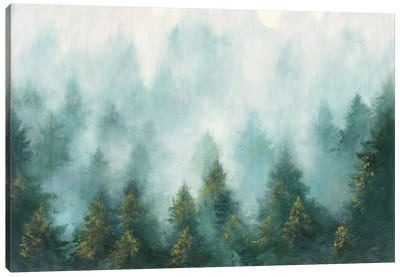 Misty Forest Canvas Art Print