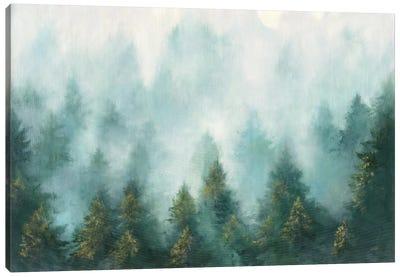 Misty Forest Canvas Art Print