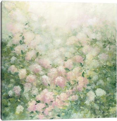 Dreamy Canvas Art Print