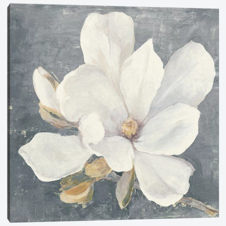 Serene Magnolia Gray Canvas Print #JPU41} by Julia Purinton Canvas Art