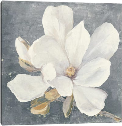 Serene Magnolia Gray Canvas Art Print