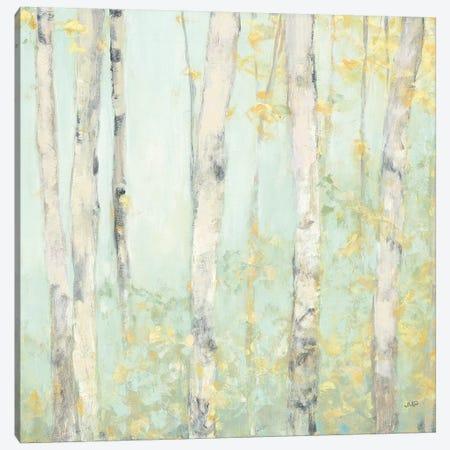 Spring Birches Canvas Print #JPU42} by Julia Purinton Canvas Art