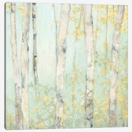 Spring Birches Canvas Print #JPU42} by Julia Purinton Canvas Art