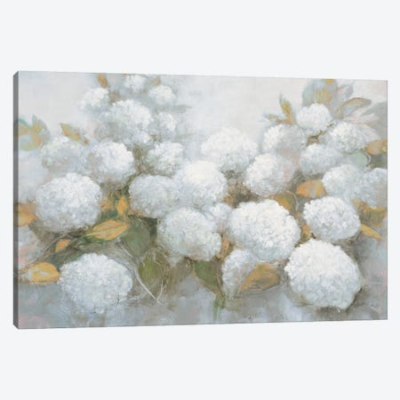 Annabelle Hydrangeas Blue Gray Crop 3-Piece Canvas #JPU44} by Julia Purinton Canvas Art Print