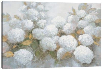 Annabelle Hydrangeas Blue Gray Crop Canvas Art Print