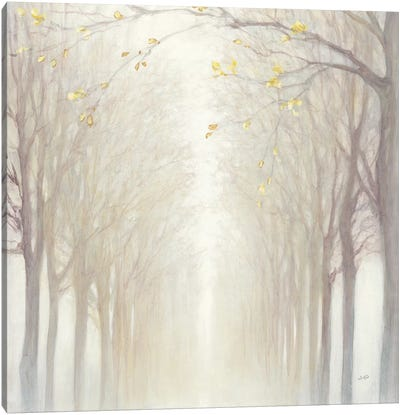 Misty Canvas Art Print