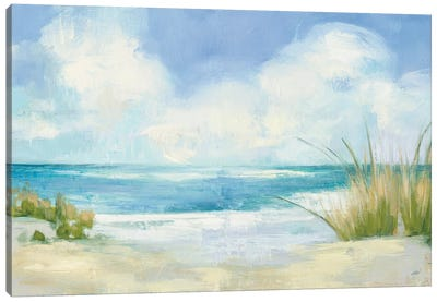 Wind and Waves I Canvas Art Print