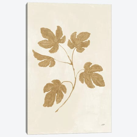 Botanical Study III Gold Canvas Print #JPU68} by Julia Purinton Canvas Wall Art