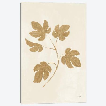 Botanical Study III Gold Canvas Print #JPU68} by Julia Purinton Canvas Wall Art