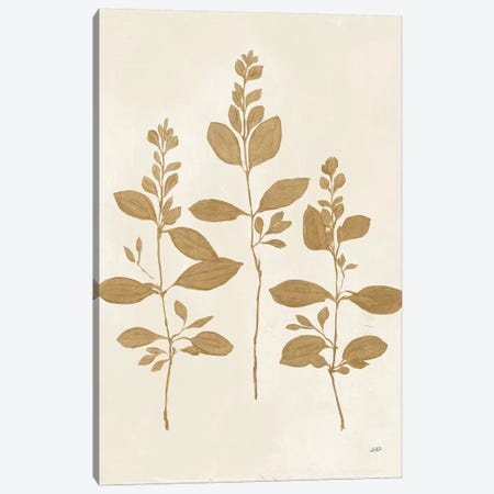 Botanical Study IV Gold 3-Piece Canvas #JPU69} by Julia Purinton Canvas Artwork