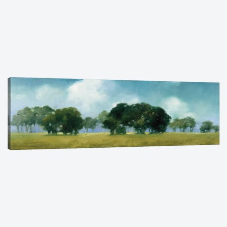 Cloud Dance Canvas Print #JPU70} by Julia Purinton Art Print