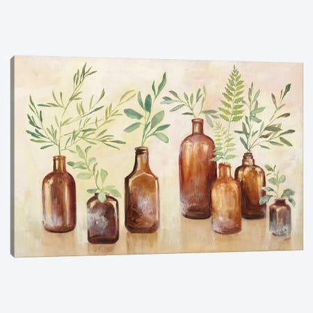 Woodland Still Life I Canvas Print #JPU77} by Julia Purinton Canvas Wall Art
