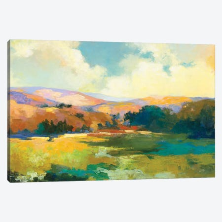 Daybreak Valley Crop Canvas Print #JPU80} by Julia Purinton Canvas Wall Art