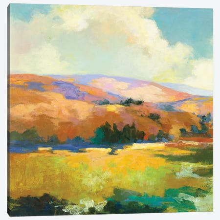 Daybreak Valley II Canvas Print #JPU81} by Julia Purinton Canvas Art