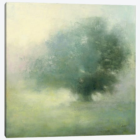 Morning Haze Canvas Print #JPU93} by Julia Purinton Art Print