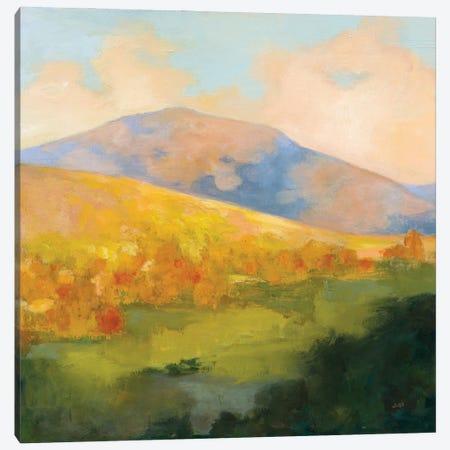 Mountain Morning Canvas Print #JPU94} by Julia Purinton Canvas Artwork