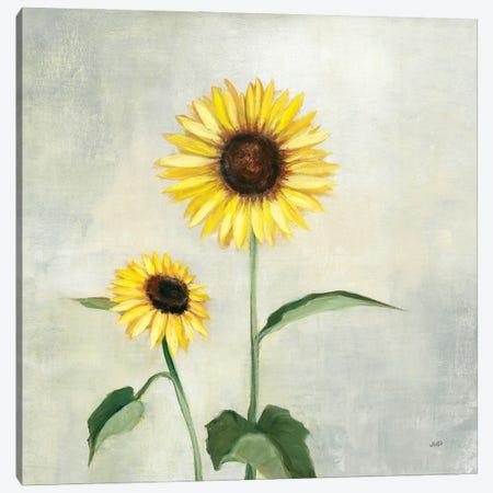 Sunny Blooms I Canvas Print #JPU99} by Julia Purinton Canvas Art Print