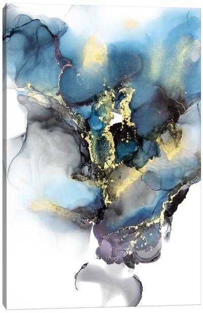 Stormy Daze Canvas Art Print